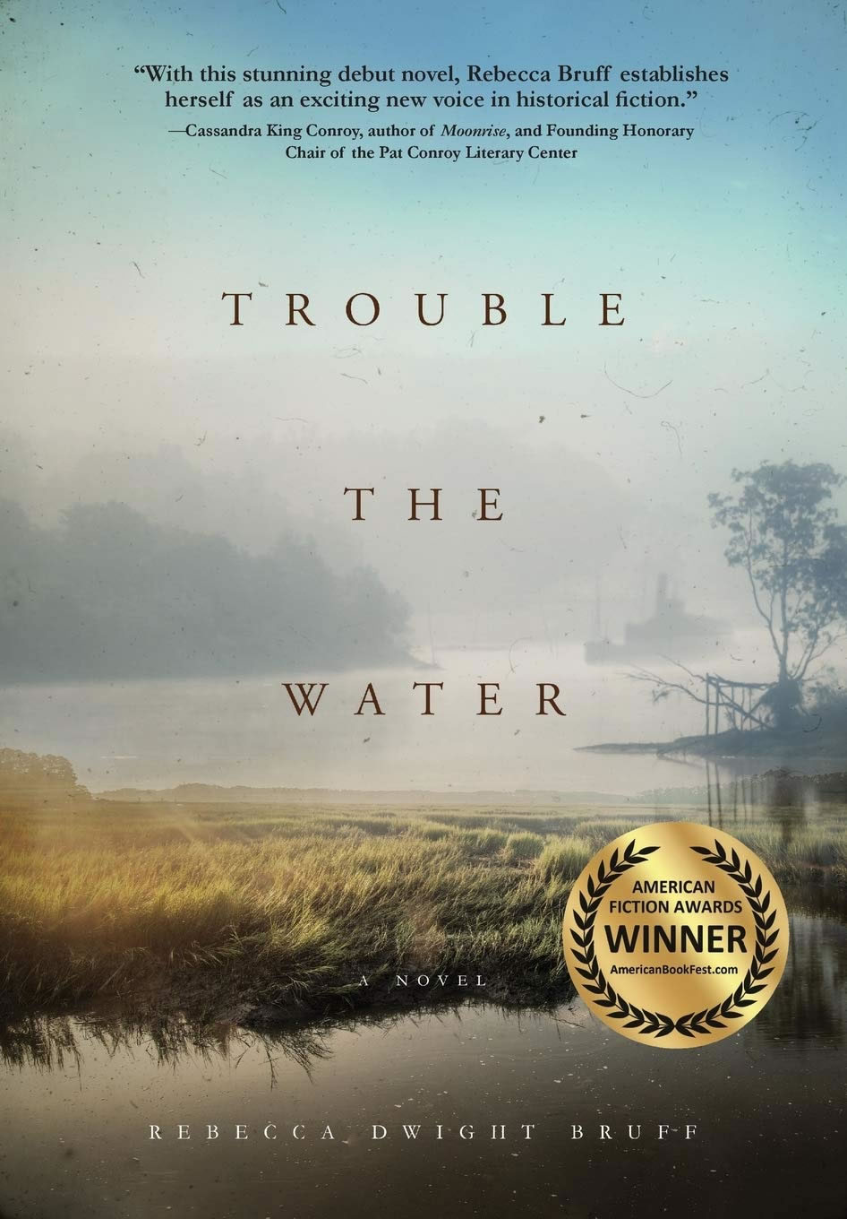 Cover of Trouble the Water by Rebecca Dwight Bruff