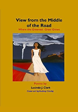 Cover image of View from the Middle of the Road by Lucinda Clark